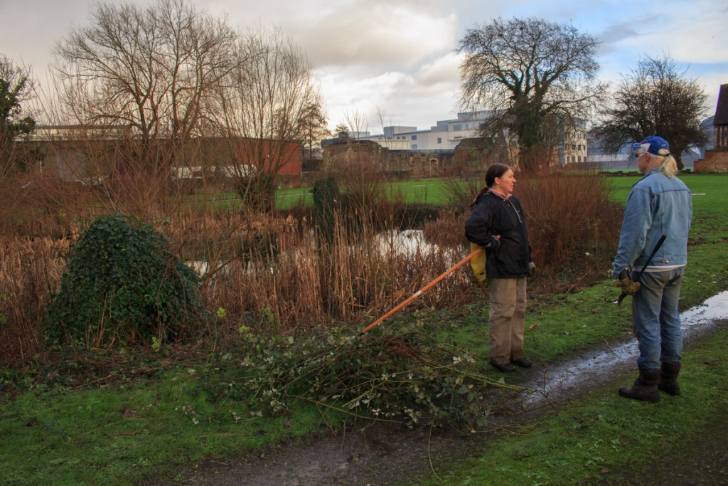 Clearing brambles around the pond.